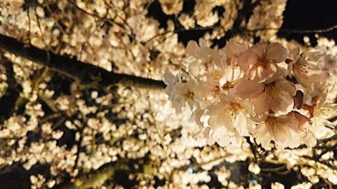 Photo_19-04-19-20-06-04.490