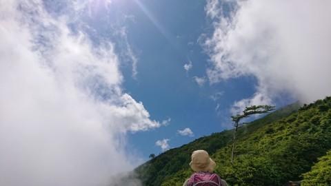 Photo_20-08-01-14-29-40.015